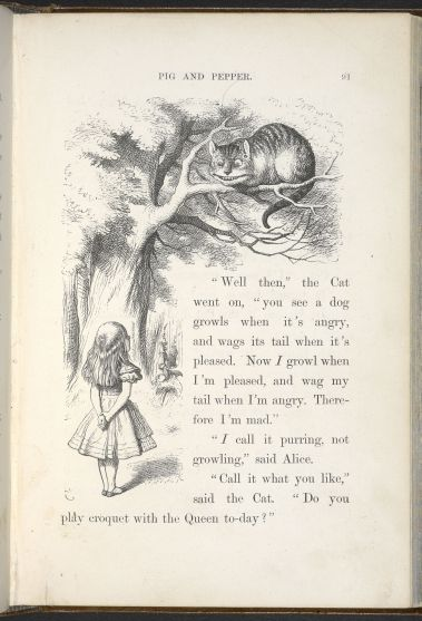 Sir John Tenniel's illustration of Alice and the Cheshire Cat from the 1866 edition of Alice's Adventures in Wonderland by Lewis Carroll