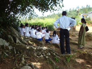 children-learn-under-the-shade-of-a-tree