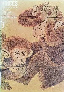 Book cover: Quirky drawing of two apes.
