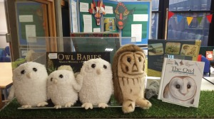 Soft pets, four owls and a mouse, with picture books about owls.